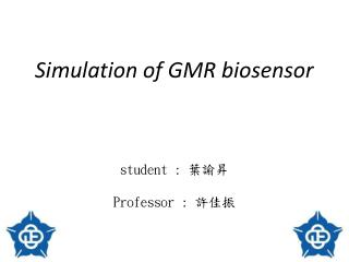 Simulation of GMR biosensor student :  葉諭昇 Professor :  許佳振