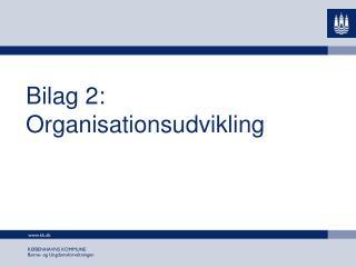 Bilag 2: Organisationsudvikling