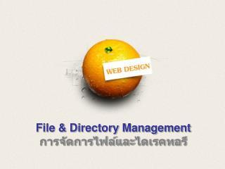 File & Directory Management การจัดการไฟล์และ ไดเรคทอ รี