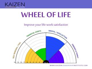 WHEEL OF LIFE Improve your life-work satisfaction