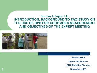 Naman Keita Senior Statistician FAO Statistics Division November 2008