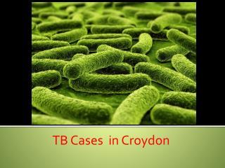 TB Cases  in Croydon