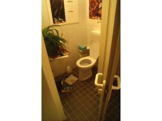 HET COMPLEX INNOVATIEPROCES VAN EEN EENVOUDIG ARTEFACT: DE GESCHIEDENIS VAN DE WC