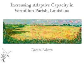 Increasing Adaptive Capacity in Vermilion Parish, Louisiana