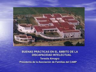 BUENAS PRÁCTICAS EN EL ÁMBITO DE LA DISCAPACIDAD INTELECTUAL Teresita Almagro
