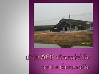 บริษัท  AEK  บรีดเดอร์ ฟาร์ม สาขา ฟาร์มหนองเขิน