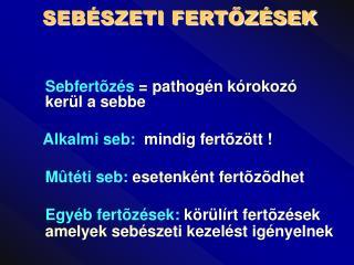 SEB SZETI FERTOZ SEK