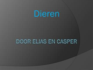 Door ELIAS EN CASPER