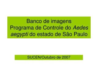 Banco de imagens  Programa de Controle do  Aedes aegypti  do estado de São Paulo