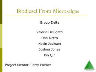 Biodiesel From Micro-algae