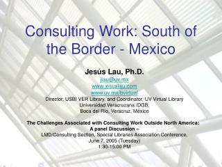 Consulting Work: South of the Border - Mexico