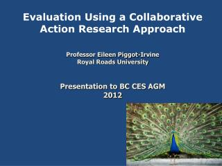 Evaluation Using a Collaborative Action Research Approach