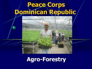 Agro-Forestry