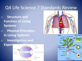 Q4 Life Science 7 Standards Review