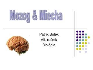 Patrik Bolek                   VII. ročník                  Biológia