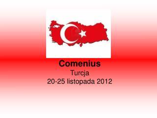 Comenius Turcja 20-25 listopada 2012