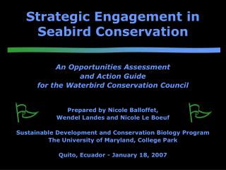 Strategic Engagement in Seabird Conservation