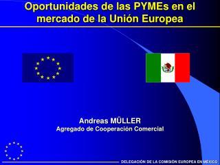 Oportunidades de las PYMEs en el mercado de la Uni�n Europea