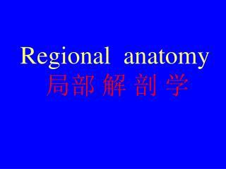 Regional  anatomy ?? ? ? ?