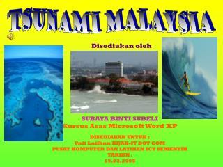 tsunami malaysia