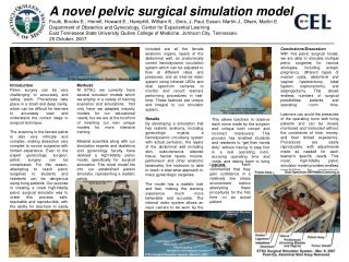 A novel pelvic surgical simulation model
