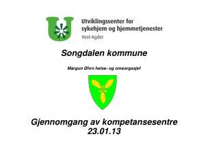 Songdalen kommune Margun Øhrn helse- og omsorgssjef Gjennomgang av kompetansesentre 23.01.13