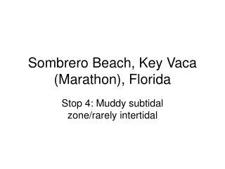 Sombrero Beach, Key Vaca (Marathon), Florida