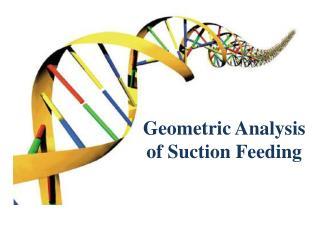 Geometric Analysis of Suction Feeding