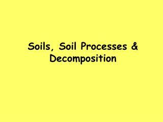 Soils, Soil Processes & Decomposition