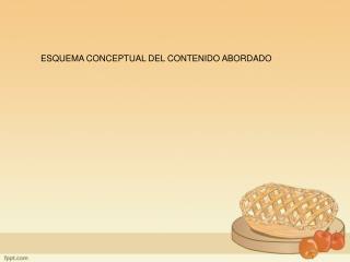 ESQUEMA CONCEPTUAL DEL CONTENIDO ABORDADO