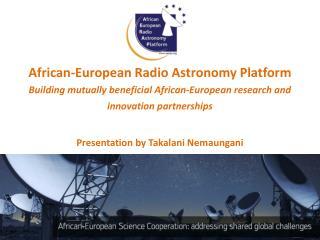 African-European Radio Astronomy Platform