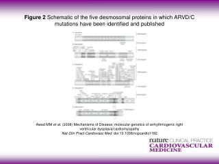 Awad MM  et al.  (2008)  Mechanisms of Disease: molecular genetics of arrhythmogenic right
