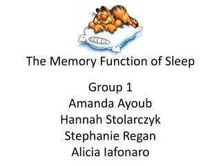 The Memory Function of Sleep