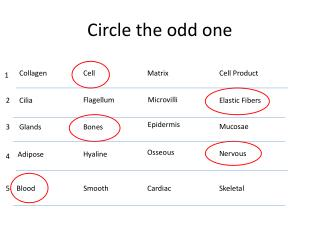 Circle the odd one