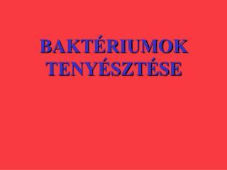 BAKTÉRIUMOK TENYÉSZTÉSE