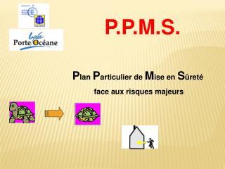 P lan  P articulier de  M ise en  S ûreté  face aux risques majeurs