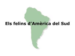 Els felins d'Amèrica del Sud