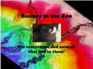 Biomes in the Zoo