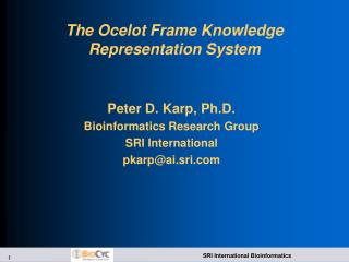 The Ocelot Frame Knowledge Representation System