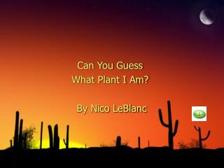Can You Guess What Plant I Am?  By Nico LeBlanc