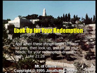 Look Up for Your Redemption
