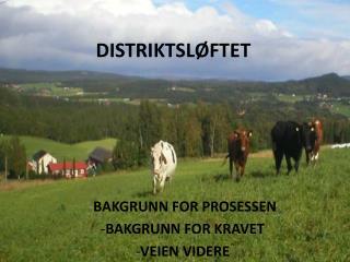 DISTRIKTSLØFTET