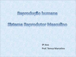 Reprodução humana Sistema Reprodutor Masculino