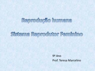 Reprodução humana Sistema Reprodutor Feminino