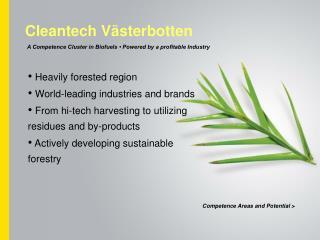 Cleantech Västerbotten