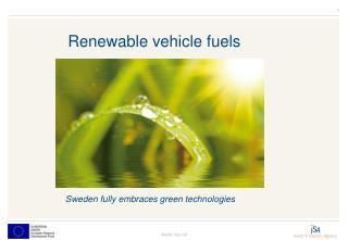 Renewable vehicle fuels