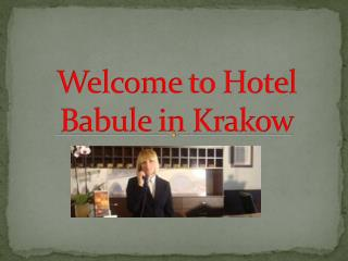 Welcome  to Hotel Babule  in Krakow