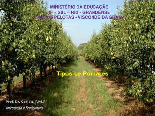 Prof. Dr. Corlett, F.M.F Introdução à Fruticultura