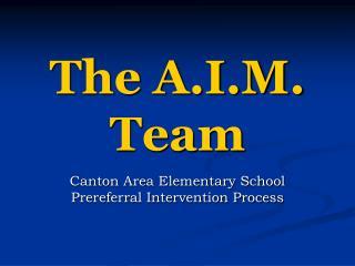 The A.I.M. Team