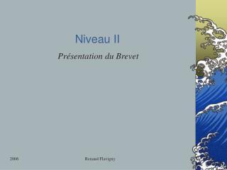 Niveau II